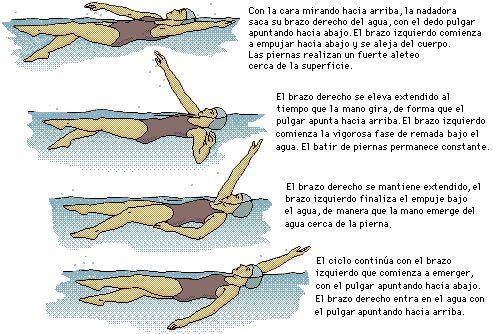 mito6-natación-dolor-espalda